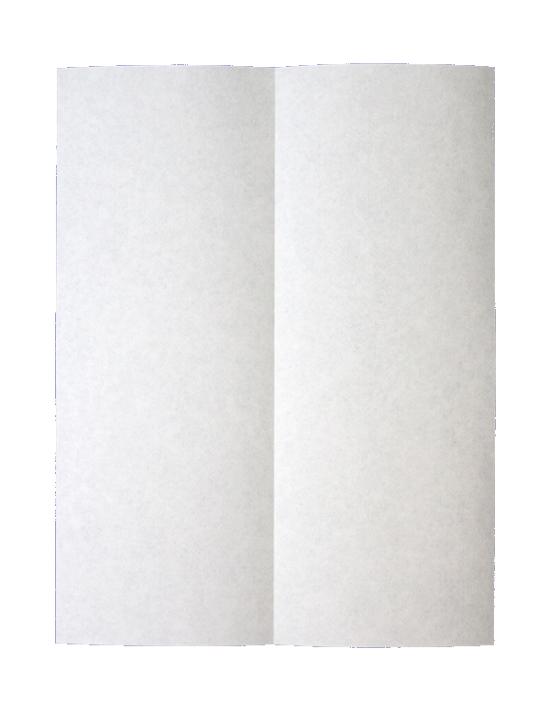 papirflyver