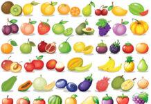 find frugter