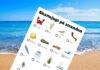 skattejagt på stranden